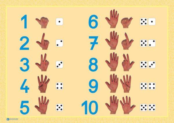 """Hände-Poster """"Zahlen 1-10"""""""