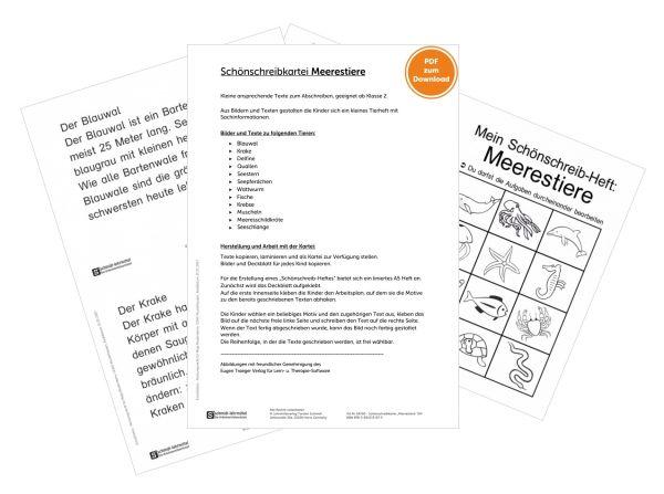 10021-23 Merestiere Master Bilder_0.jpg
