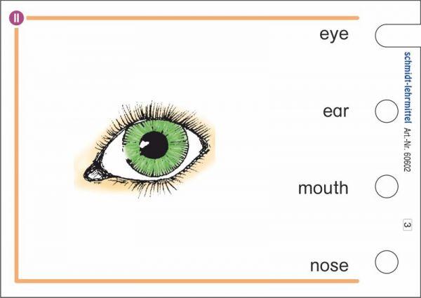 'Vocabulary II' für den Stöpselkasten